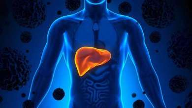 Photo of The Habits and Nutrition that Keep the Liver Healthy