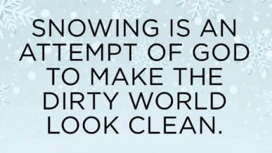 Photo of Winter Funny Quotes About Love For Instagram