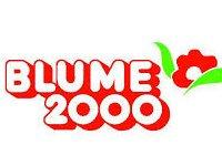 blume2000 bild 1