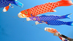 Carp-Koi-Windsocks-280x157