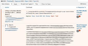 comment spam screenshot