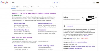 example of rich result on the serp for nike sneakers