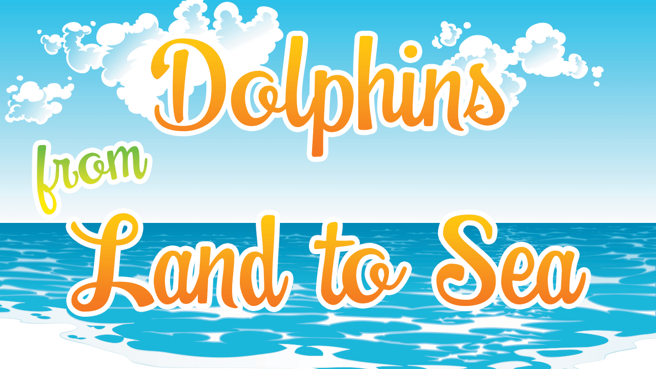 Dolphins From Land to Sea