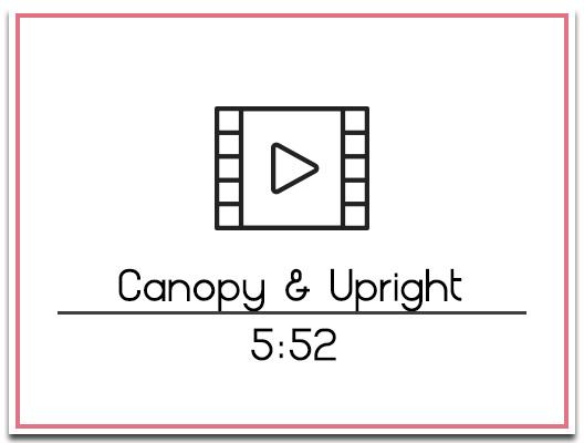 12. Backdrop to Upright & Canopy
