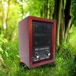 Sanqiao-Ozone-Generator-Air-Purifier-Ionizer-Deodorizer-with-2-Ceramic-Ozone-Plates-0