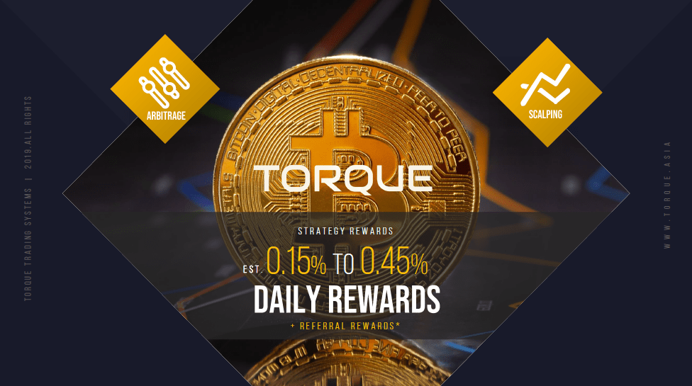 Torque Trading Systems Review – Most Transparent Arbitrage Trading Wallet I Have Seen