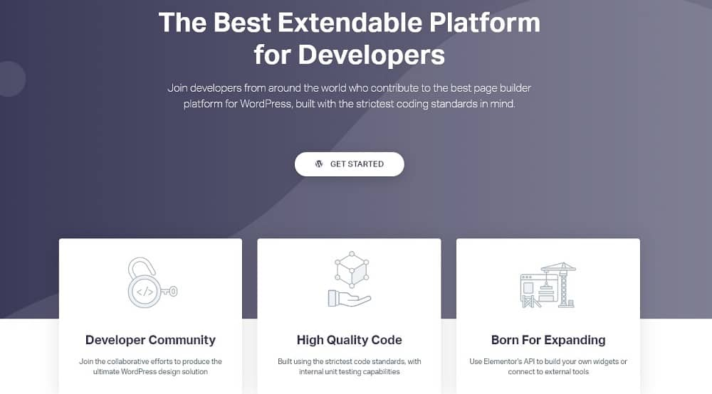elementor Web-developer-oriented features
