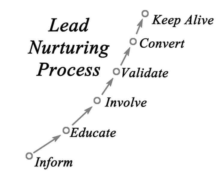 condurre il processo di nutrimento