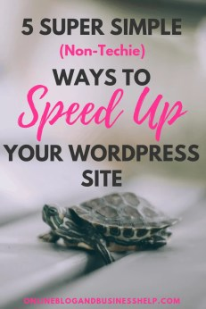 5 Super Simple Non Techie Ways to Speed Up Your WordPress Site