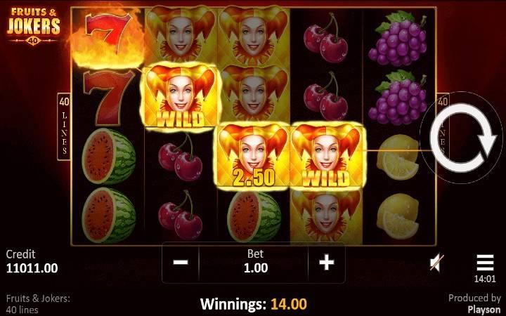 Fruits and Jokers 40 lines, Bonus Casino