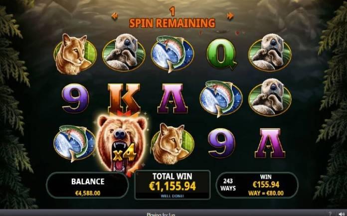 Džoker, Multiplikatori, Online Casino Bonus, Big Bear