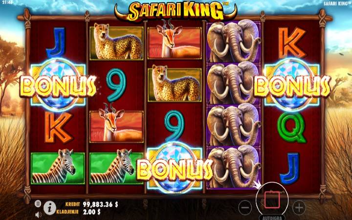 Besplatni Spinovi, Online Casino Bonus, Safari King