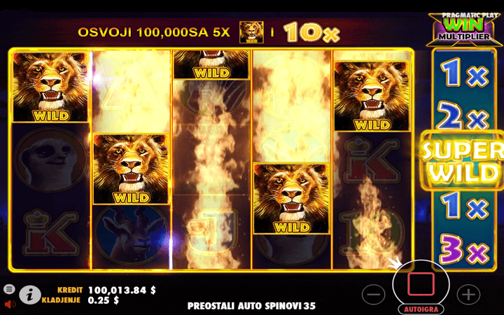 Hot Safari, Pragmatic Play, Online Casino Bonus