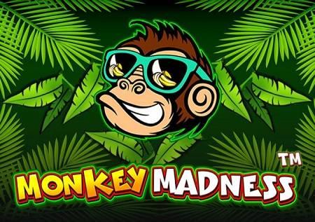 Monkey Madness – jednostavan a veoma isplativ slot!