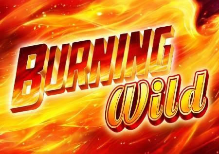 Burning Wild – džokeri donose vatrenu zabavu