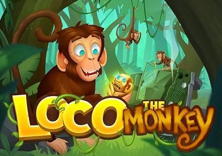 Loco the Monkey nudi online kazino zabavu!