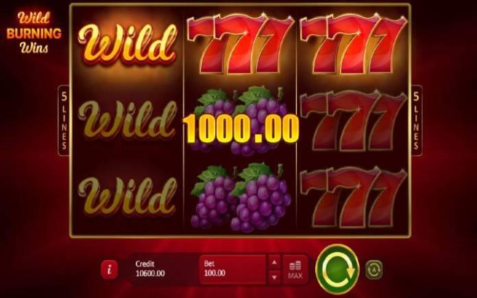 džoker-online casino bonus-wild burning wins