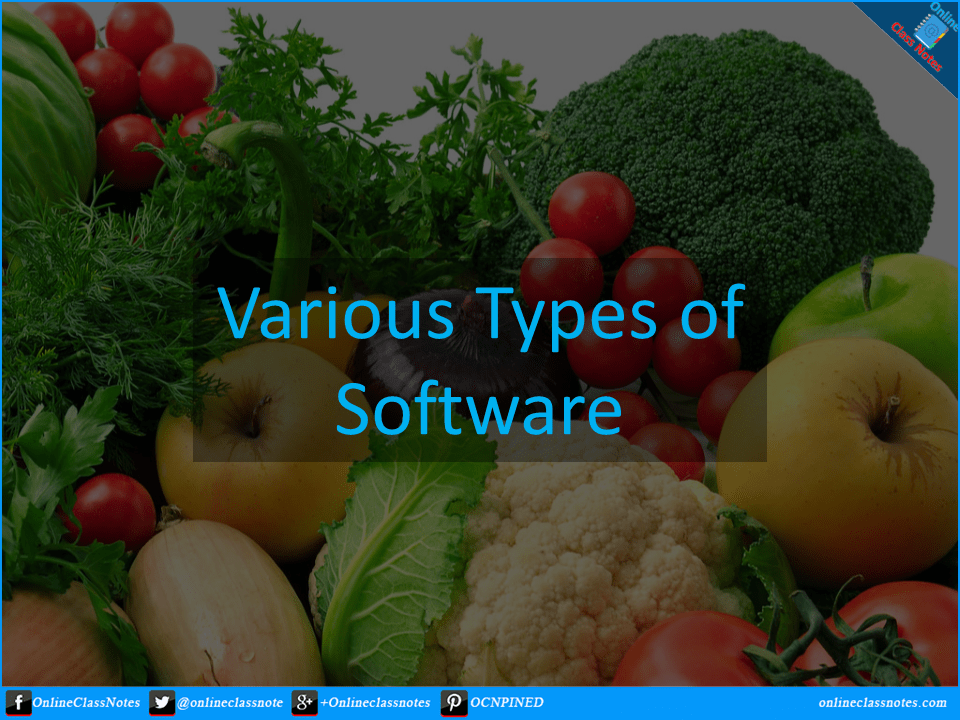 various-types-of-software
