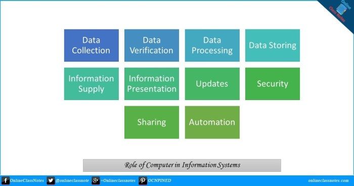 What are the roles of computer in Information System?