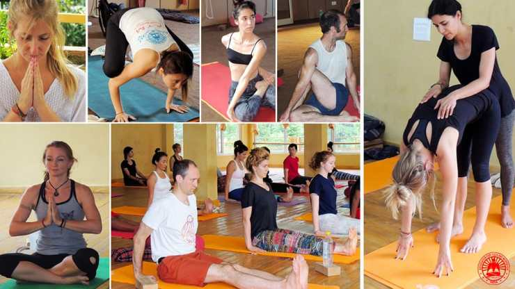 How To Find The Best Yoga Teacher Training Program For You? 1
