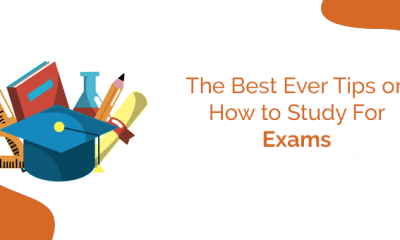The Best Ever Tips on How to Study For Exams 8