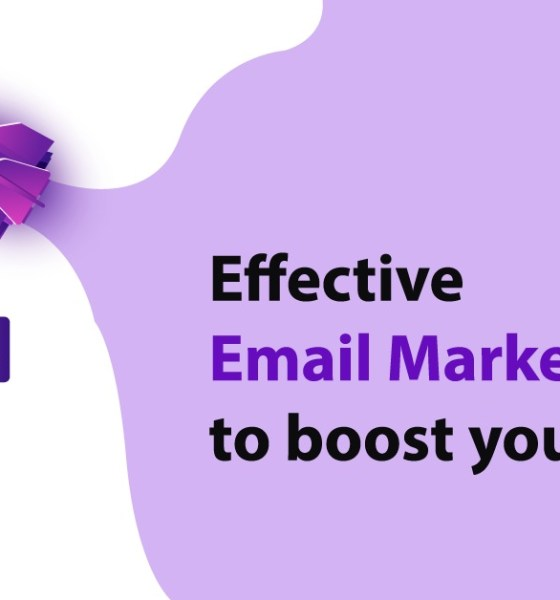 email marketing guest post