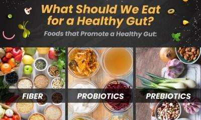 Gut Health-c02ddbf4
