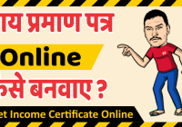 How To Get Income Certificate Online Hindi