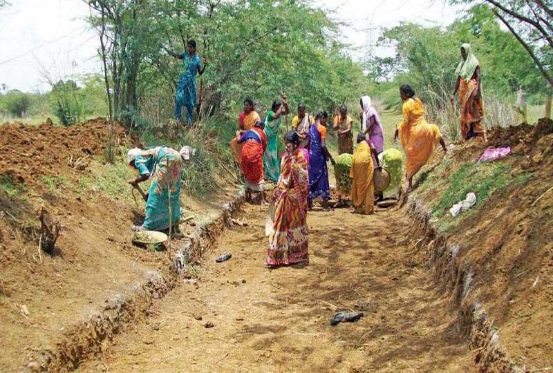 MGNREGA Official Update