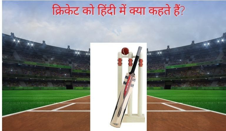 Cricket Ko Hindi Me Kya Kahate Hain