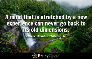 https://www.brainyquote.com/quotes/quotes/o/oliverwend109160.html