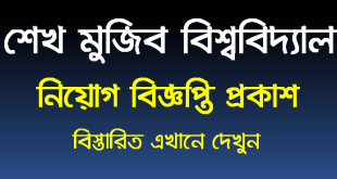 Bangabandhu Sheikh Mujibur Rahman Maritime University job circular 2020