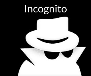 Incognito op internet