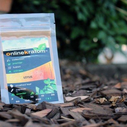 Ultra fine Lotus Flower Extract