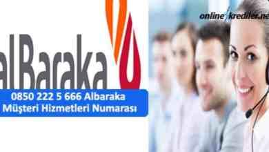 Photo of 0850 222 5 666 Albaraka Müşteri Hizmetleri Numarası