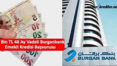 Photo of 55 Bin TL 36 Ay Burganbank Emekli Kredisi Başvurusu