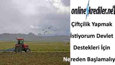 Photo of Çiftçilik Yapmak İstiyorum Devlet Destekleri İçin Nereden Başlamalıyım