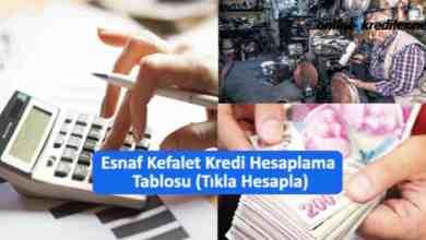 Photo of Esnaf Kefalet Kredi Hesaplama Tablosu (Tıkla Hesapla)