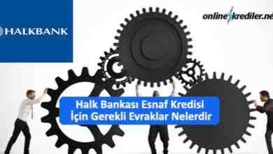 Photo of Halk Bankası Esnaf Kredisi İçin Gerekli Evraklar Nelerdir