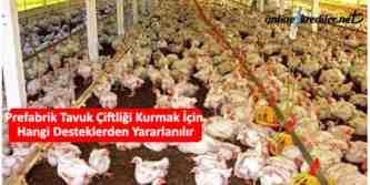prefabrik tavuk çiftliği destekleri