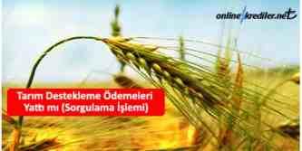 tarım destekleme ödeme sorgulama
