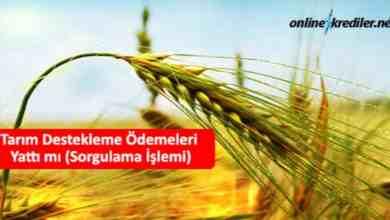 Photo of Tarım Destekleme Ödemeleri Yattı mı (Sorgulama İşlemi)