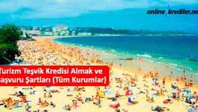 Photo of Turizm Teşvik Kredisi Almak ve Başvuru Şartları