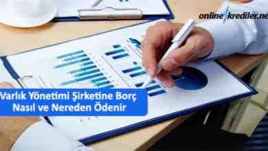 Photo of Varlık Yönetimi Şirketine Borç Nasıl ve Nereden Ödenir