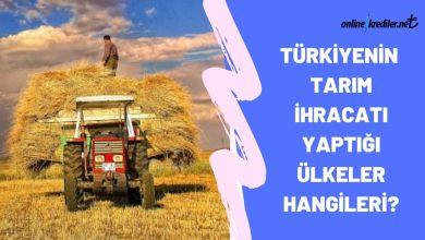 Photo of TürkiyeninTarım İhracatı Yaptığı Ülkeler Hangileri?
