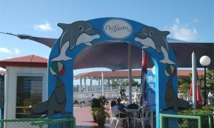 The Water Park of Cienfuegos' Dolphinarium, enjoyment for everyone