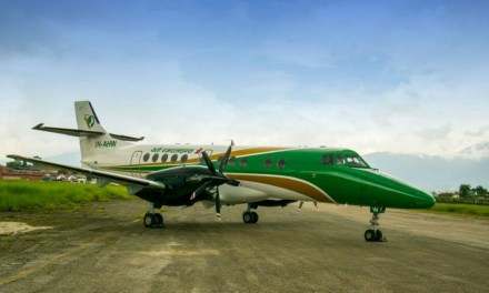 Domestic airlines elect leadership