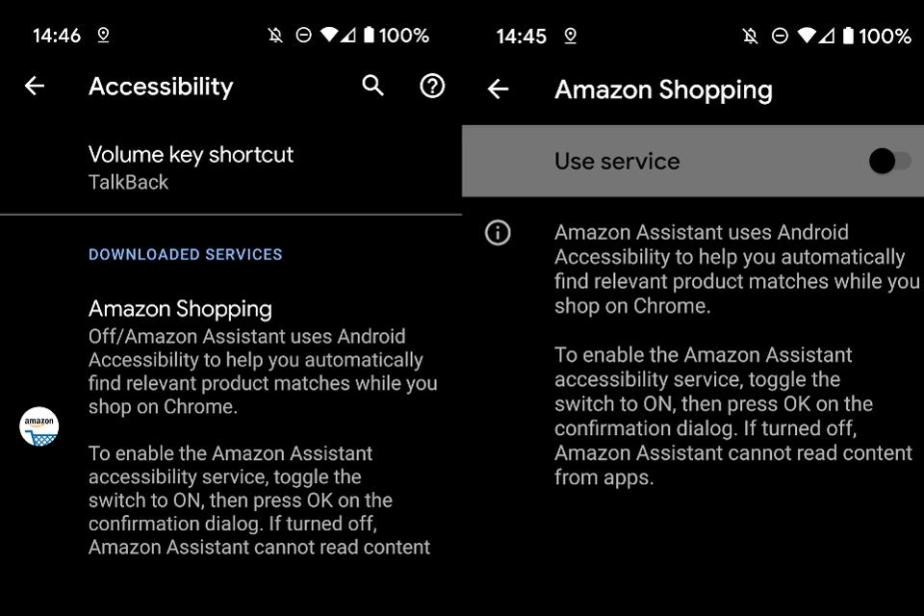 Enter the Accessibility options under the settings menu and make sure the 'Use service' option is deactivated for each entry.