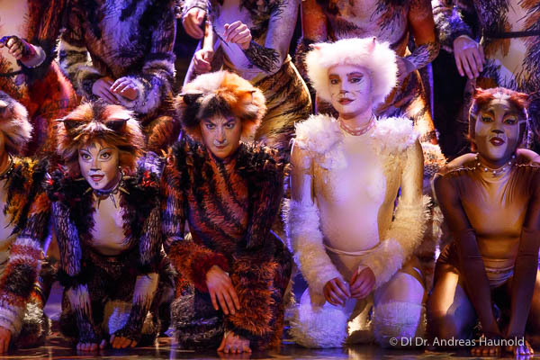 Andrew lloyd webber's cats may finally prowl on to the big screen, directed by les. Wien Ronacher Cats Neueinstudierung Von Andrew Lloyd Webbers Erfolgsmusical Premiereonline Merker