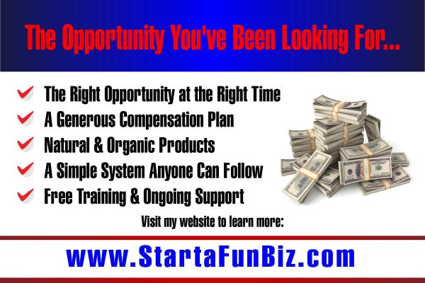 start a fun biz